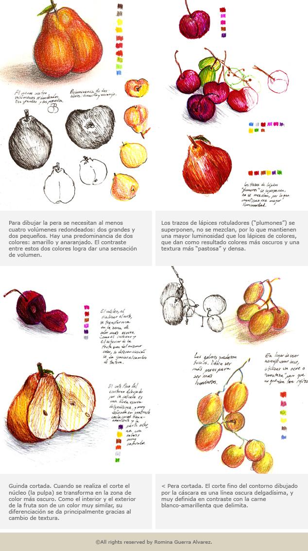 RG - Estudio frutas - Todos los derechos reservados por Romina Guerra Alvarez.©