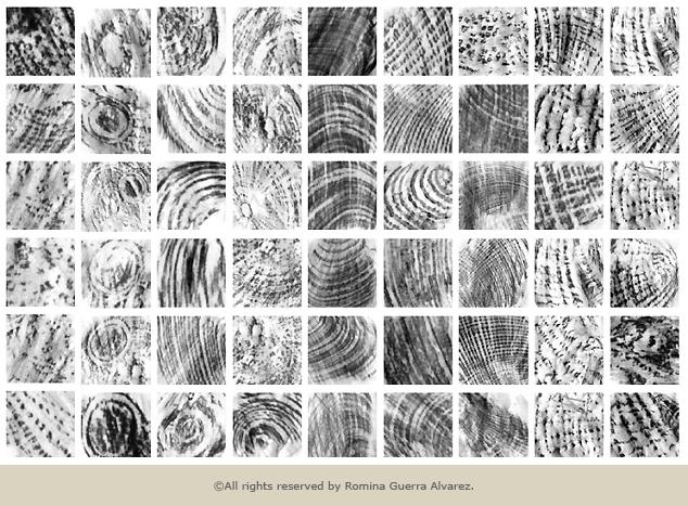 RG - Estudio Conchales Paleta de Texturas - ©Todos los derechos reservados por Romina Guerra Alvarez.