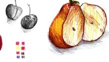 RG - estudiofrutas- Todos los derechos reservados por Romina Guerra Alvarez.©